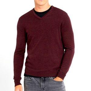 Banana Republic V-Neck Sweater in Merino Wool